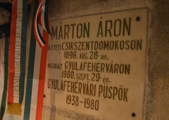 2016 Marton Aron